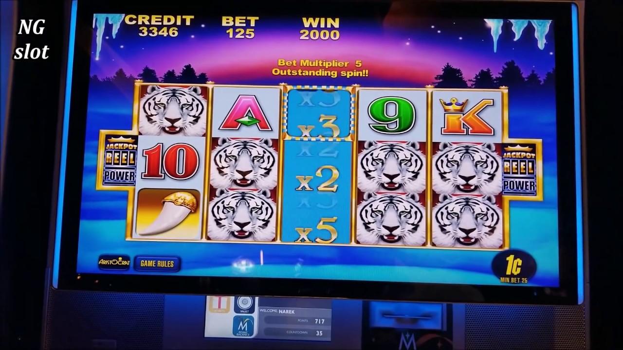 Kreuzfahrt Casino 16343
