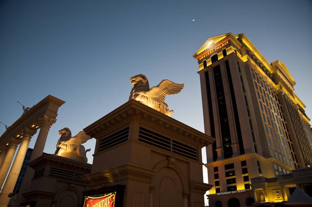 Las Vegas Casino 409930