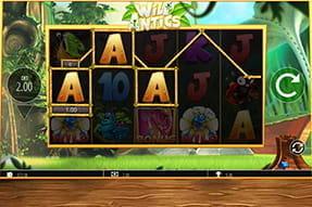 Pokerturniere NRW 2020 479228